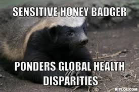 Honey Badger Meme - badger meme generator meme best of the funny meme