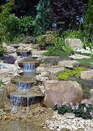 landscaping garden design with succulents lovetoknow