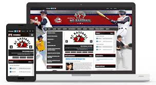 teamsnap for teams leagues clubs and associations home sports website software create your league or team website today