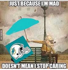 Funny Miami Dolphins Memes - 203 best miami dolphins images on pinterest dolphins dolphin
