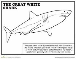 25 shark coloring pages ideas ocean coloring