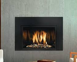 Contemporary Gas Fireplace Insert by Mendota Modern