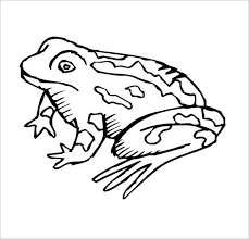 frog color page animals frog coloring pages to print climbing