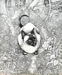 siamese cat commission by nazzirithe on deviantart