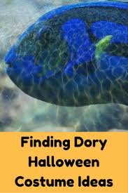 finding dory costumes for halloween finding dory halloween