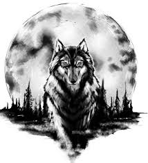 20 best wolf designs with meanings wolf design