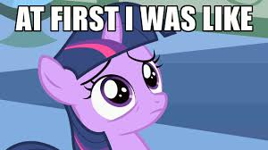 Mlp Funny Meme - flash sentry and twilight sparkle funny memes google search my