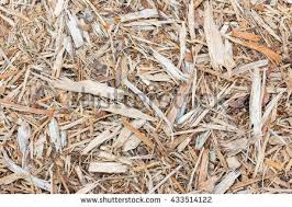 Landscaping Wood Chips by Offcut Stock Images Royalty Free Images U0026 Vectors Shutterstock
