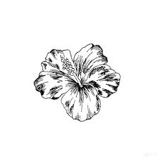 Tropical Design Tropical Floral Sketch Embroidery Design