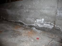 what to do with a wet basement
