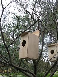Birds Home Decor Birds Home Images Home Decor Ideas
