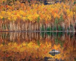 New York State Fall Foliage Map by 5 Tips For Better Fall Foliage Photos Popular Photography