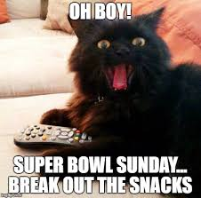 Super Bowl Sunday Meme - super bowl 51 imgflip