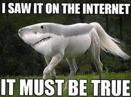 Biggest Internet Memes - i saw it on the internet meme http jokideo com i saw it on