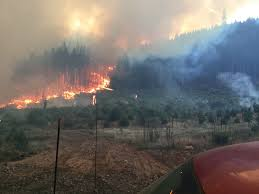 Wild Fire Columbia Gorge by Dry Creek Fire In Washington Burns 400 Acres Approaches Homes