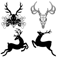 awesome deer tattoo design ideas that seem almost magical