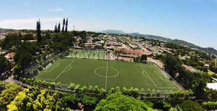 artificial turf and sports turf systems by greenfields