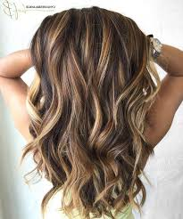 15 photo of highlights for long hairstyles