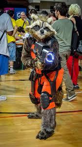 Raccoon Halloween Costumes 20 Raccoon Costume Ideas Signing