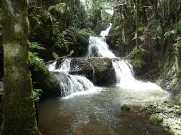 Kona Botanical Gardens Water Falls In Tropical Botanical Gardens Picture Of Kailua Kona