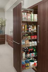 Pull Out Cabinets Kitchen Pantry Pantry Cabinet Pull Out Pantry Cabinets For Kitchen With Kitchen