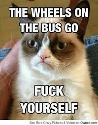 Go Fuck Yourself Meme - grumpy cat meme the wheels on the bus go fuck yourself photo