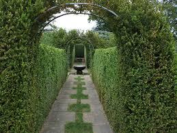 free photo landscape ornamental garden formal hedge max