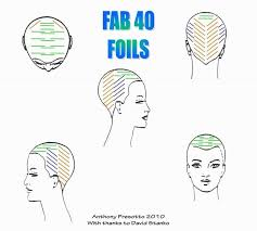 hair color and foil placement techniques 37 best aveda images on pinterest hair dye balayage and beauty