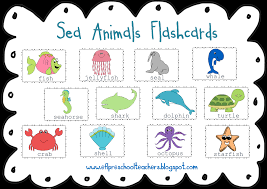 sea animals with names