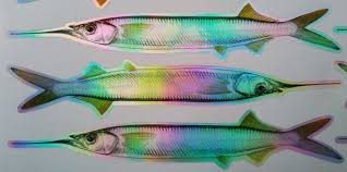 r lures with flashing laser fish heat laminated between 2 strips of flexiibile pvc maker of osprey fishing tackle offers a one stop supply of