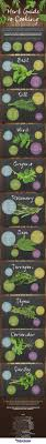 herb guide to cooking infographic best infographics