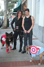 Tony Stark Halloween Costume Dog Halloween Costumes Photos Jenna