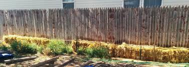 straw bale gardening 5 steps
