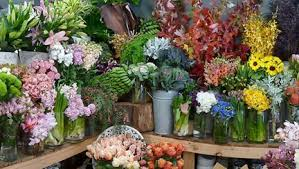 wholesale fresh flowers perishable shipments and floral supply wholesale on time every