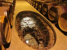 Wine Cellar Edmonton - underground wine cellars construction hungrylikekevin com