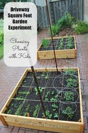choosing vegetable plants with kids our square foot garden in