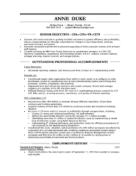 Technical Support Job Description For Resume by Cfo Resume Vp Resume Executive Cfo Resume Examples Testimonials