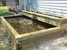 Types Of Fish For Garden Ponds - best 25 above ground pond ideas on pinterest fish ponds fish