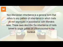 inheritance pattern quizlet what are non mendelian traits youtube
