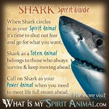 shark symbolism meaning spirit totem power