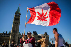 What Is A Flag Officer Cannabis Day Is Coming Soon What U0027s Next For Pot Plans In Ontario