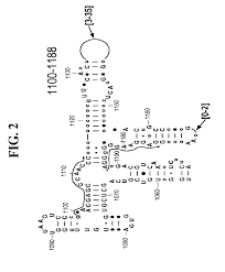 patent us8822156 methods for rapid identification of pathogens