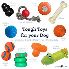 9 tough toys for your dog puppy tales