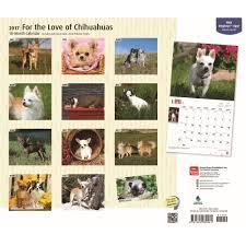 australian shepherd 2016 calendar for the love of chihuahuas 2017 wall calendar 9781465080561