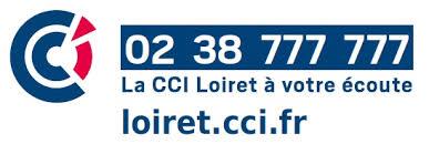 Calaméo Cfe Immatriculation Snc Localisation Et Horaires Cci Du Loiret