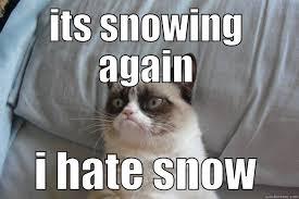 Grumpy Cat Snow Meme - it s snowing again quickmeme