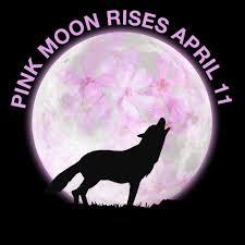 Pink Moon April Stargazing 2017 Full U0027pink Moon U0027 To Illuminate The Skies On April 11
