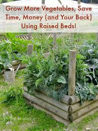Benefits Of Urban Gardening - the many benefits of raised garden beds