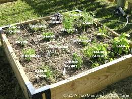 Garden Bed Layout Raised Garden Bed Designs Idea Garden Ideas Cedar Raised Garden