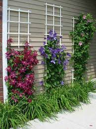 Downspout Trellis 20 Diy Ways To Make Your Porch And Patio More Enjoyable U2022 Metdaan